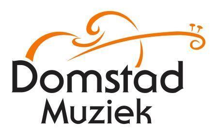 Domstad-Muziek-compressed1.jpg